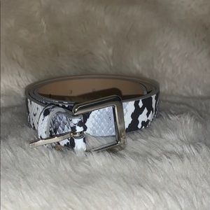 Express Trendy Snake Belt Silver, white and black